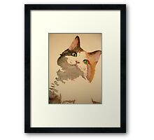 I'm All Ears: A Curious Calico Cat Portrait Framed Print