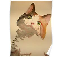 I'm All Ears: A Curious Calico Cat Portrait Poster