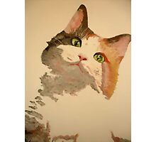 I'm All Ears: A Curious Calico Cat Portrait Photographic Print