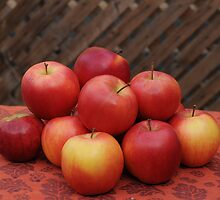 """""""How do you like them apples""""? by DaveVaughan"""