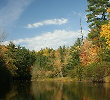 Northwoods Reflections by mnclampits