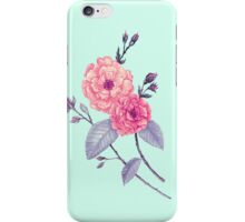 Rose, Soft Peach on Mint iPhone Case/Skin
