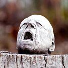 The Agony by Anthony Davey