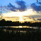 Marshy  Sunset by Allan McKean