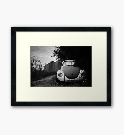 hidden in bushes Framed Print