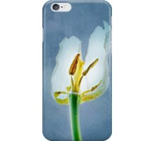 White withering tulip flower iPhone Case/Skin