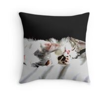 Sleeping Beauty's Throw Pillow