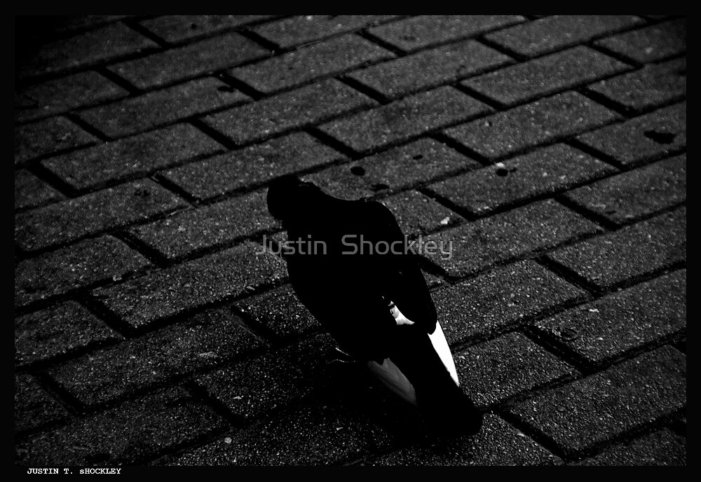 Le Pigeon by Justin  Shockley