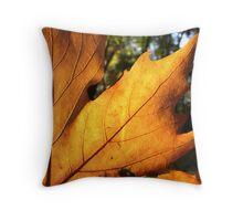 I love the autumn Throw Pillow