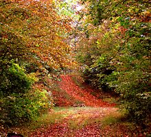 falls trail by loramae