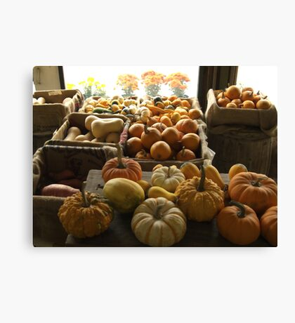 Pumpkins at the Sosnowski Farm Stand | Top 10 award Canvas Print