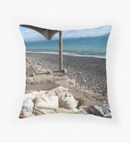 Manta (Marine Camp Madagascar) Throw Pillow