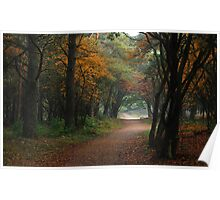 More than a touch of autumn Poster