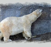 LET IT SNOW, LET IT SNOW...... by cdudak