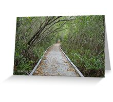 morning on the eco trail Greeting Card
