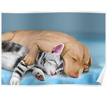 Grey Cat and Brown Dog Sleeping and Hugging Poster