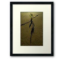 Untitled.00044 Framed Print