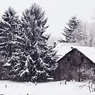 Redreaming Wood Barn in Snow by REDREAMER
