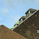 Art Nouveau Roof by heinrich