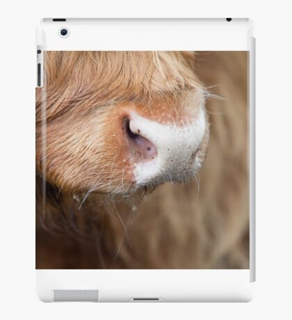 Nosey Parker iPad Case/Skin
