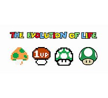 The Evolution of Life Photographic Print
