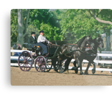 Stylized photo of a woman driving an Andalusian horse-drawn carriage in dressage competition at Del Mar Horsepark in Del Mar, CA US. Metal Print