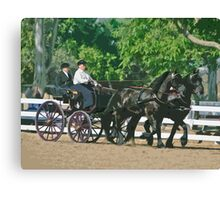 Stylized photo of a woman driving an Andalusian horse-drawn carriage in dressage competition at Del Mar Horsepark in Del Mar, CA US. Canvas Print
