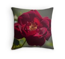 Blooming Bright Red Throw Pillow