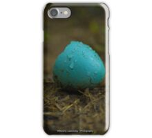 Hatched Robin's Egg iPhone Case/Skin