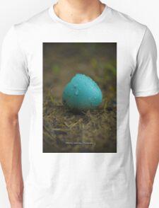 Hatched Robin's Egg T-Shirt