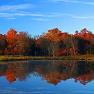 Fall Reflections by BigD