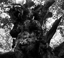 Spooky Tree by kkmeer