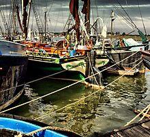 safe harbour  by savosave