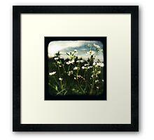 TTV #1 Framed Print