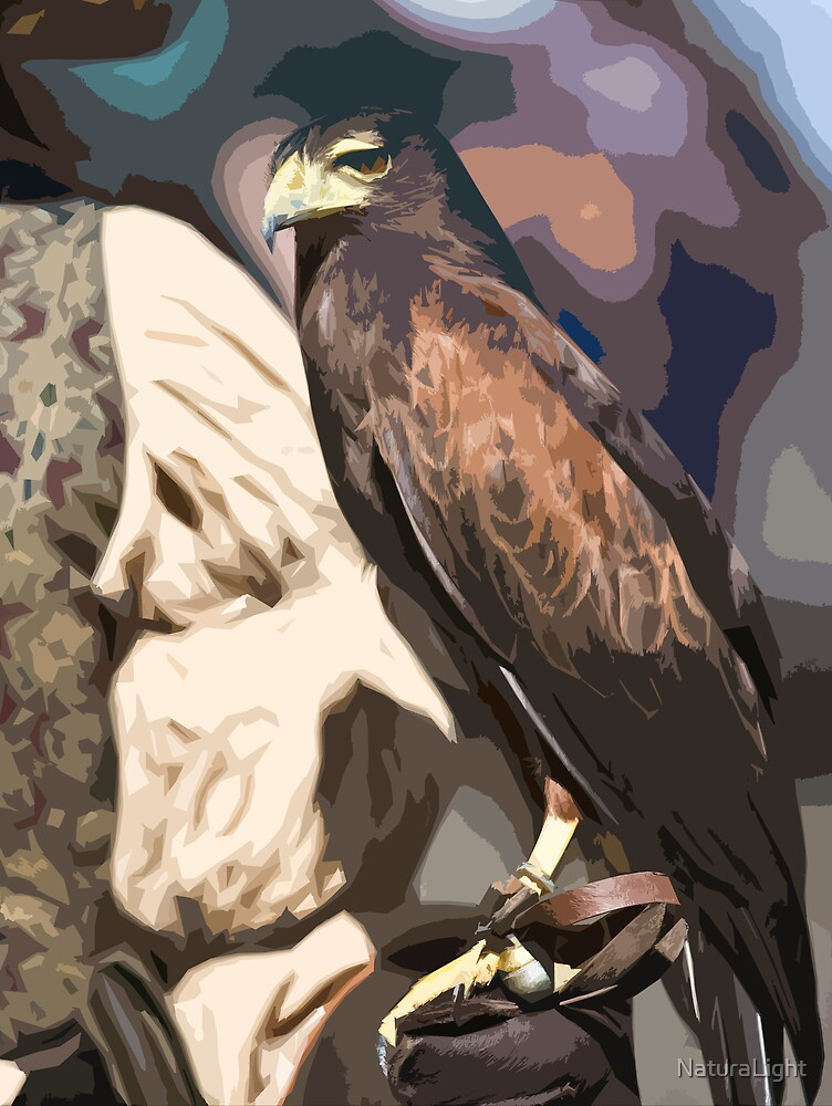 Stylized photo of a falcon sitting on leather gloved had of falconer by NaturaLight
