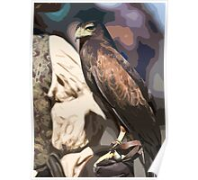 Stylized photo of a falcon sitting on leather gloved had of falconer Poster