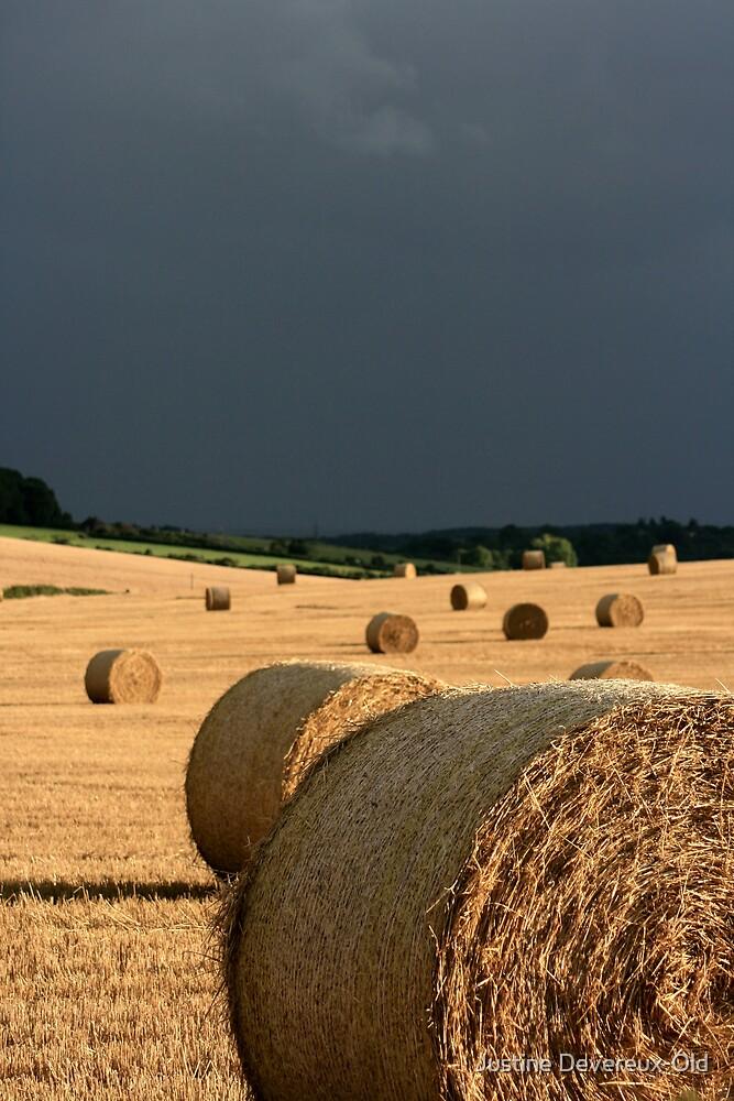 Hay Bales by Justine Devereux-Old