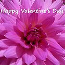 Dahlia - Happy Valentine's Day! by Evelyn Laeschke