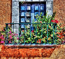 Mexican Window by SueAnne