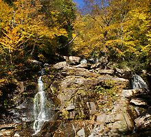 Fall Kaaterskill Falls  by Marc Payne Photography
