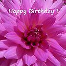 Dahlia - Happy Birthday! by Evelyn Laeschke
