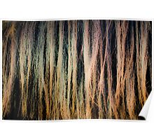 Horse Mane - Abstract Photograph Poster