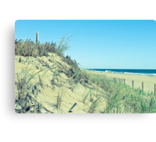 Atlantic Sand Dunes - Ocean City Canvas Print