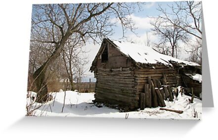 Rustic Winter Scene in Barda Romania by Dennis Melling