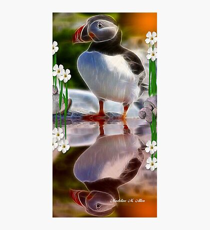 THE NEWFOUNDLAND PUFFIN Photographic Print