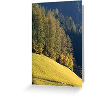 Autumn Sun Greeting Card