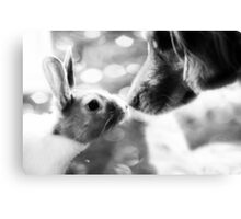 Interspecies Friendship #2 Canvas Print