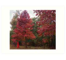 Rouge Autumn 1 Art Print
