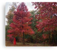 Rouge Autumn 1 Canvas Print