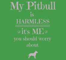 My Pitbull is harmless - it's me you should worry about Kids Clothes